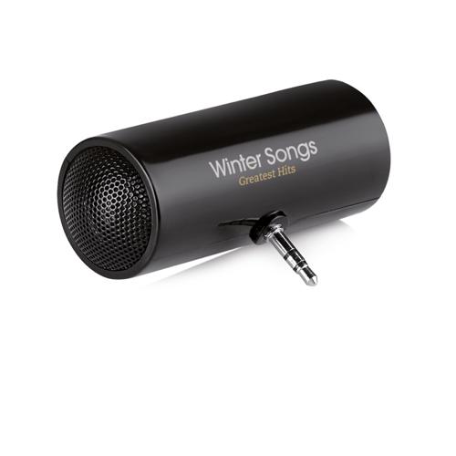 Speaker in