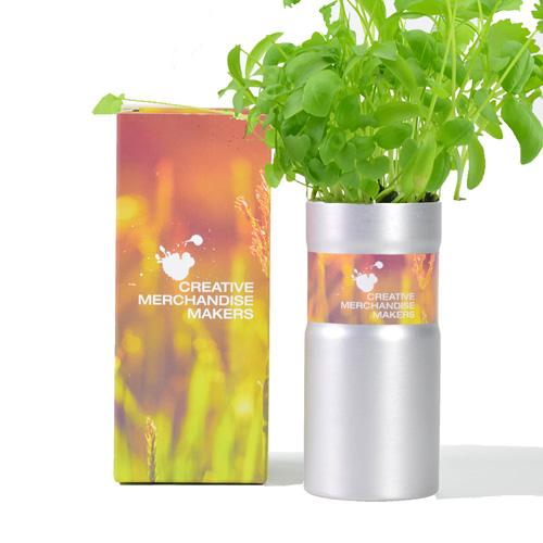 Desktop Garden - Boxed
