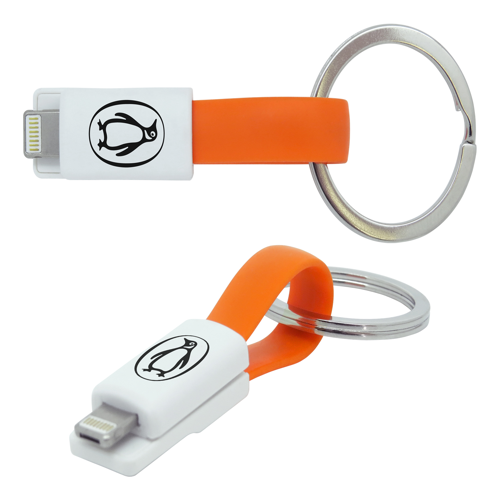 2 in 1 Keyring Charging Cable | Arca