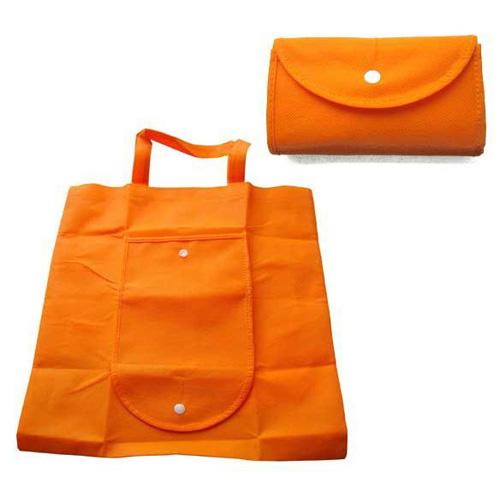 Non Woven Bag - Folding
