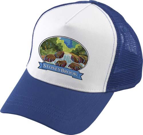 Transporter Cap in blue