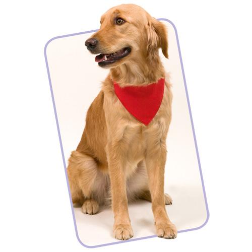 Bandana Pet Collar Roco in red