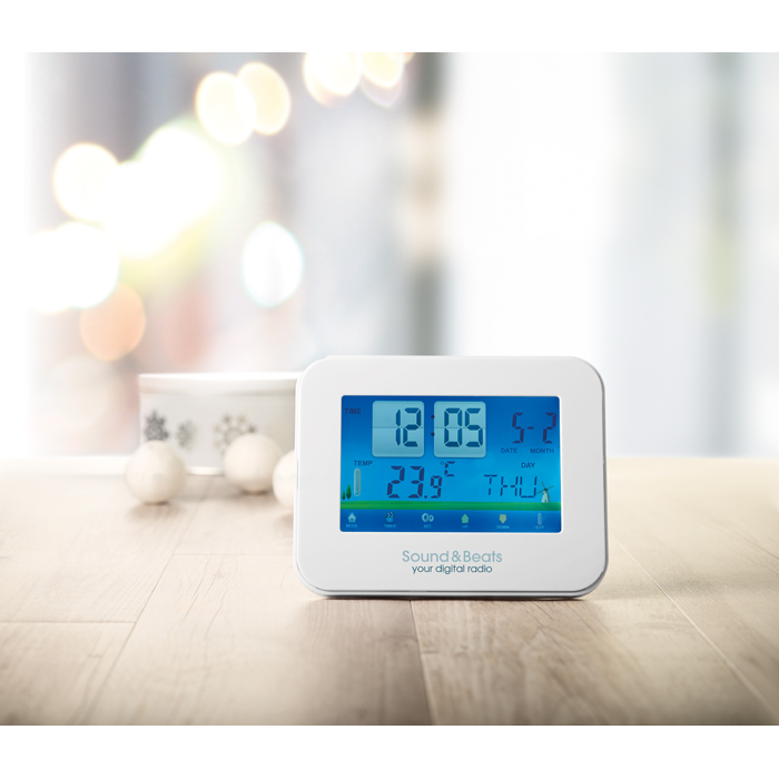 Printed Weather Station Touch Screen