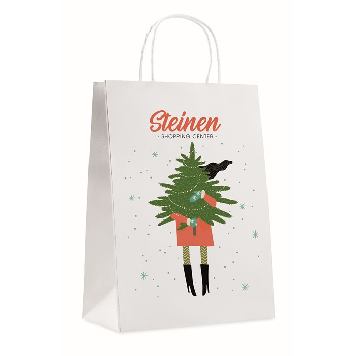 Promotional Gift paper bag large size
