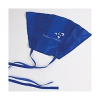 Promotional kites